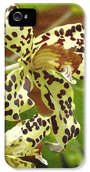 Leopard Orchids IPhone 5s Case