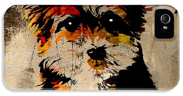 Yorkshire Terrier IPhone 5s Case by Marvin Blaine