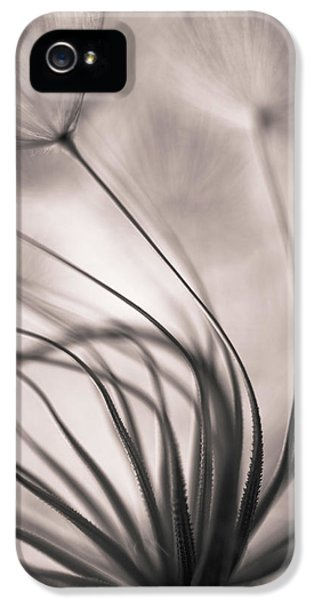 Flow iPhone 5s Case - Untitled by Keren Or
