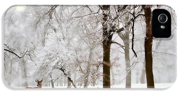 Winter's Breath IPhone 5s Case by Jessica Jenney