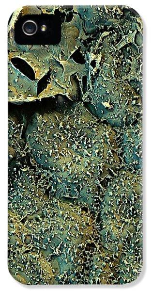 Broccoli IPhone 5s Case