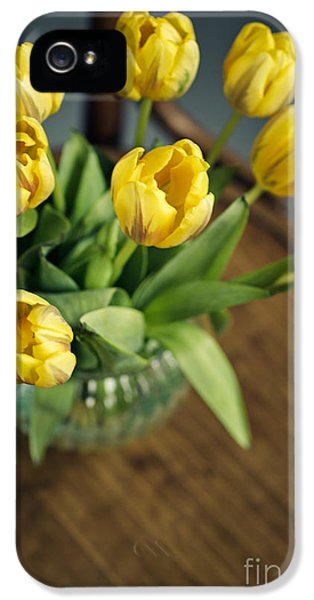 Tulip iPhone 5s Case - Still Life With Yellow Tulips by Nailia Schwarz