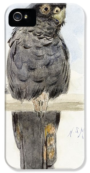 Cockatoo iPhone 5s Case - A Black Cockatoo by Henry Stacey Marks
