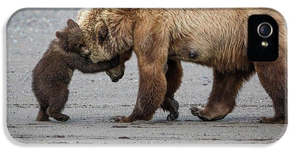 A Little Bear Hug IPhone 5s Case