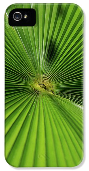 Far North Queensland iPhone 5s Case - Abstract Patterns Caused by Paul Dymond