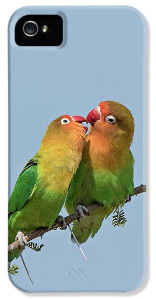 Lovebird iPhone 5s Case - Africa, Tanzania, Serengeti by Charles Sleicher