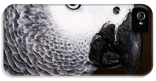 African Gray Parrot Art - Seeing Is Believing IPhone 5s Case by Sharon Cummings