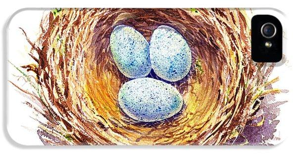 American Robin Nest IPhone 5s Case by Irina Sztukowski