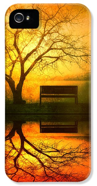 Magician iPhone 5s Case - And I Will Wait For You Until The Sun Goes Down by Tara Turner