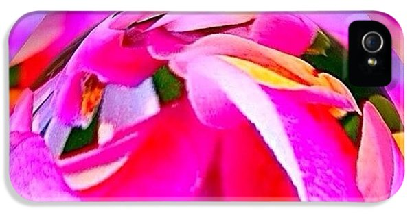 Edit iPhone 5s Case - And Now For Some Brights by Anna Porter