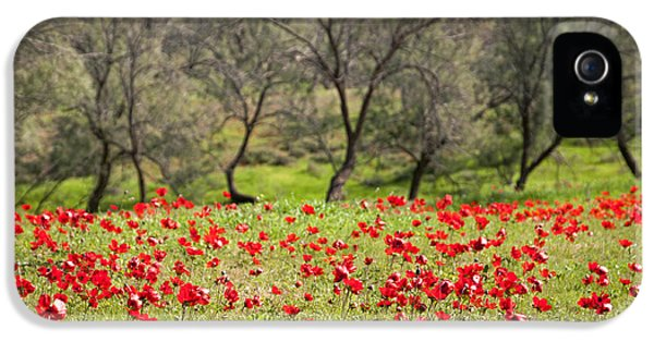 At Ruchama Forest Israel IPhone 5s Case