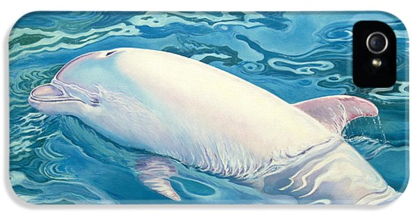 Angel Of Taiji IPhone 5s Case by Catherine Garneau