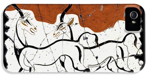 Bogdanoff iPhone 5s Case - Antelope Of Akrotiri by Steve Bogdanoff