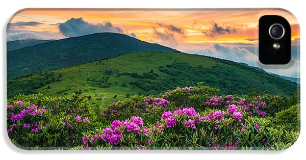 North Carolina Appalachian Trail Roan Mountain Highlands IPhone 5s Case