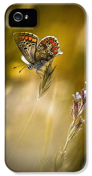 Macro iPhone 5s Case - Argus A?? La Fleur by Bonachera Jf