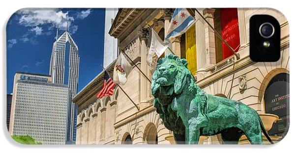 Art Institute In Chicago IPhone 5s Case by Christopher Arndt