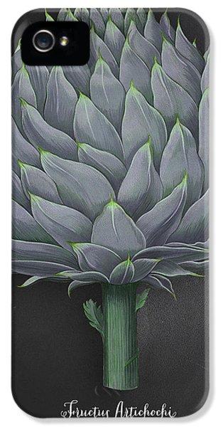 Artichoke Kitchen Art Print IPhone 5s Case