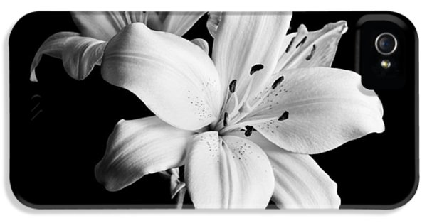 Asian Lilies 1 IPhone 5s Case