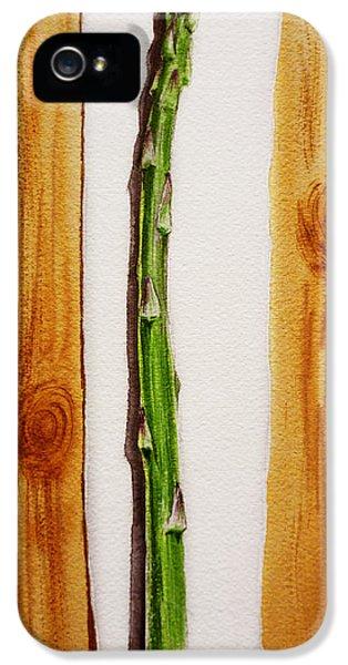 Asparagus Tasty Botanical Study IPhone 5s Case by Irina Sztukowski