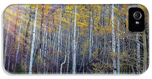 IPhone 5s Case featuring the photograph Aspen Sunset by Karen Shackles