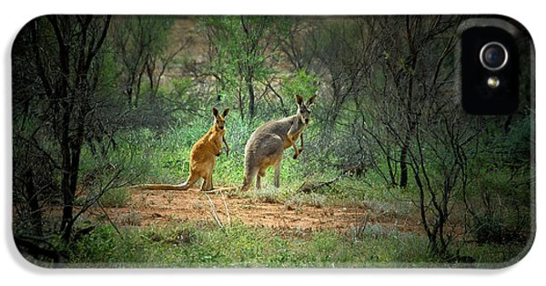 Australia, New South Wales, Broken IPhone 5s Case by Rona Schwarz