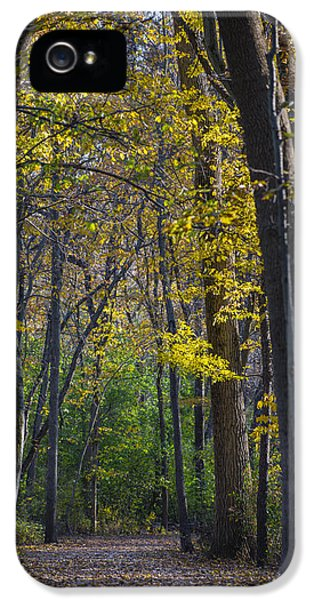 IPhone 5s Case featuring the photograph Autumn Trees Alley by Sebastian Musial