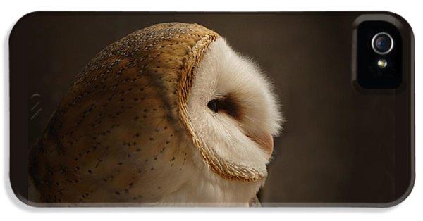 Owl iPhone 5s Case - Barn Owl 3 by Ernie Echols