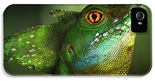Dragon iPhone 5s Case - Basilisca Verde by Jimmy Hoffman