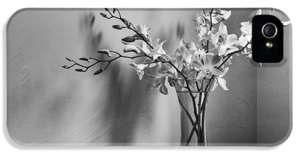 Beautiful Melancholy IPhone 5s Case by Amy Weiss
