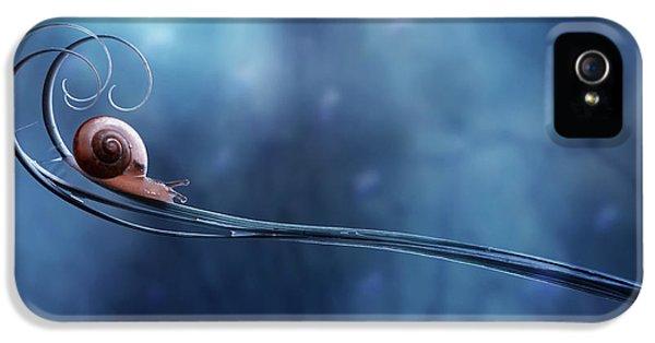 Macro iPhone 5s Case - Beautifull Snail by Dede Almustaqim