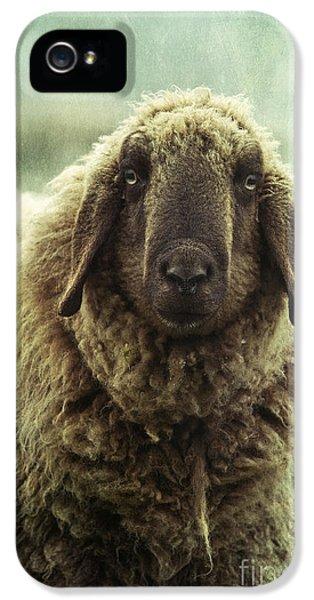 Sheep iPhone 5s Case - Besch Da Pader by Priska Wettstein