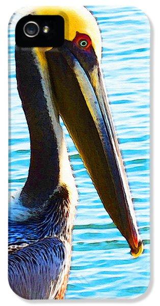 Big Bill - Pelican Art By Sharon Cummings IPhone 5s Case