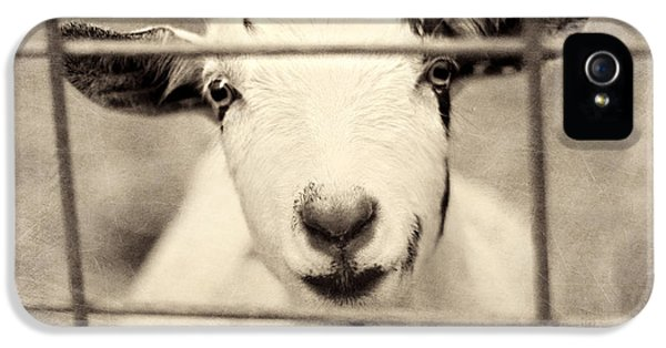 Billy G IPhone 5s Case by Amy Tyler