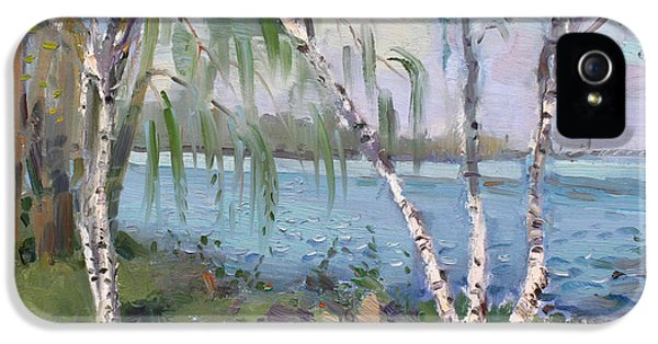 Goat iPhone 5s Case - Birch Trees By The River by Ylli Haruni