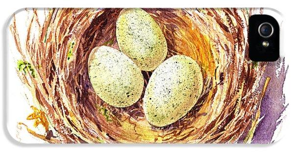 Bird Nest A Happy Trio IPhone 5s Case by Irina Sztukowski