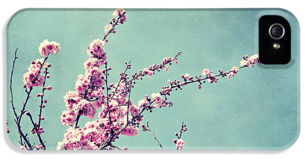 Flowers iPhone 5s Case - Bittersweet by Lupen  Grainne