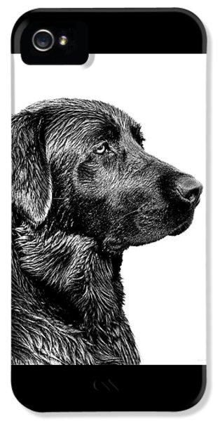 Dog iPhone 5s Case - Black Labrador Retriever Dog Monochrome by Jennie Marie Schell