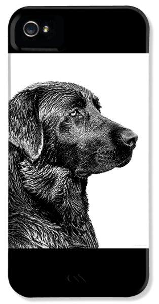 Black Labrador Retriever Dog Monochrome IPhone 5s Case