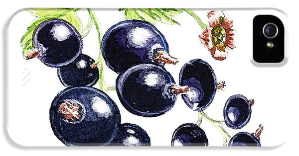 IPhone 5s Case featuring the painting Blackcurrant Berries  by Irina Sztukowski