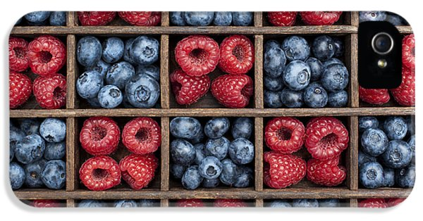 Blueberries And Raspberries  IPhone 5s Case by Tim Gainey