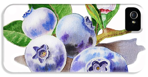 Artz Vitamins The Blueberries IPhone 5s Case