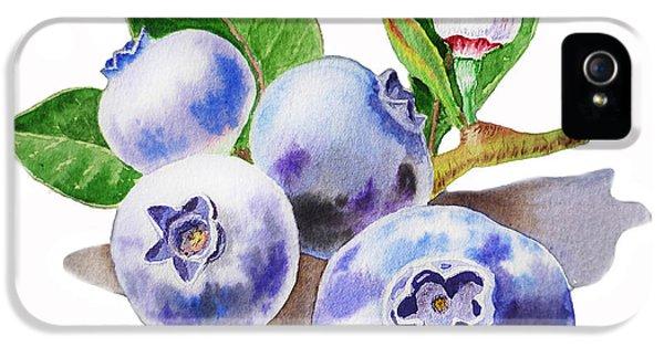 Artz Vitamins The Blueberries IPhone 5s Case by Irina Sztukowski