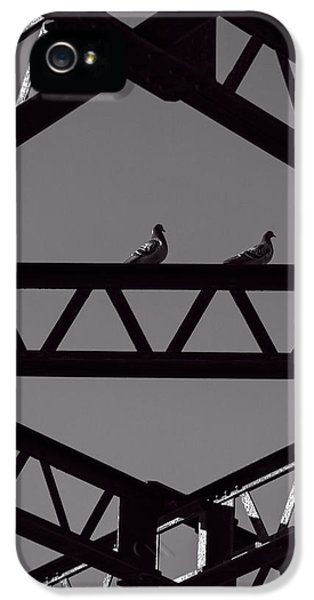 Pigeon iPhone 5s Case - Bridge Abstract by Bob Orsillo