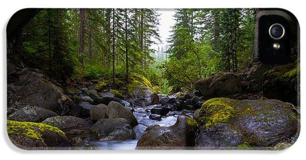 Bridge Below Rainier IPhone 5s Case