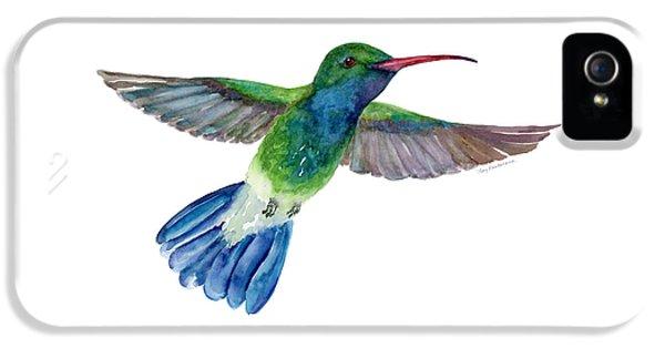 Broadbilled Fan Tail Hummingbird IPhone 5s Case by Amy Kirkpatrick