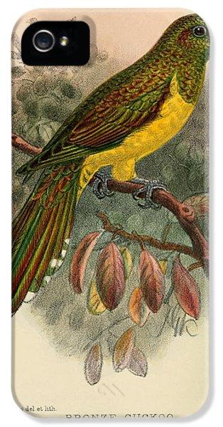 Cuckoo iPhone 5s Case - Bronze Cuckoo by Dreyer Wildlife Print Collections