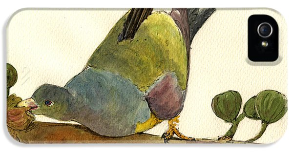 Bruce S Green Pigeon IPhone 5s Case by Juan  Bosco