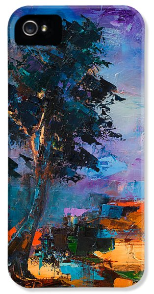 By The Canyon IPhone 5s Case