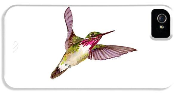Calliope Hummingbird IPhone 5s Case