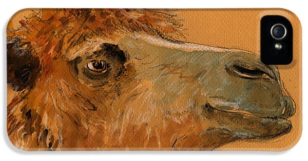 Camel iPhone 5s Case - Camel Head Study by Juan  Bosco
